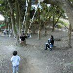 愛知県知多市の子供の遊び場「佐布里緑と花のふれあい公園」。梅まつりも同時に堪能!
