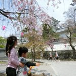 岐阜県大垣市の「大垣公園」に子供と行ってきました。2017