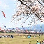 鯉のぼりと桜と遊具に出会える遊び場「相川水辺公園」|岐阜県垂井町