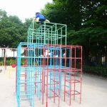【小さな公園】愛知県一宮市の子供の遊び場「小信児童公園」
