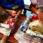 愛知県豊橋市の子供の遊び場「のんほいパーク」