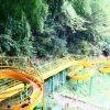 【2017年リニューアル後】福井県おおい町の子供の遊び場「きのこの森」