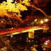 愛知県豊田市の観光名所「香嵐渓」