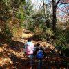 幼児にちょうどよい超低山ハイク!岐阜県各務原市の「三井山」