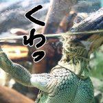東京都豊島区の子供の遊び場「サンシャイン水族館」