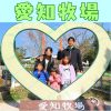 愛知県日進市の子供の遊び場「愛知牧場」