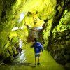 子供と大滝鍾乳洞へ。整備された大きな洞窟とケーブルカーに興奮!|岐阜県郡上市
