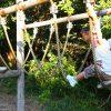 愛知県武豊町の子供の遊び場「武豊町自然公園」