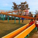 愛知県阿久比町の子供の遊び場「ふれあいの森」