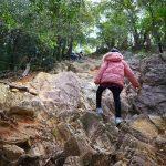 金華山で一番険しい登山道「馬の背コース」を小2女子と登ってきました!
