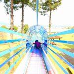 岐阜県垂井町の子供の遊び場「朝倉運動公園」|ちょうど桜が見ごろを迎えていました!